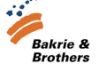 Shares of Bakrie & Brothers Plunge after Reverse Stock Split