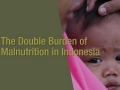 Malnutrition in Indonesia: 8.4 Million Children Stunted!