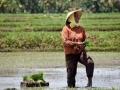 Economic Growth Update: Outlook for Indonesia and the World Remains Uncertain