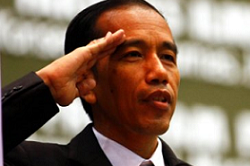 What are Joko Widodo's Economic & Social Development Targets?