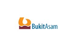 Tambang Batubara Bukit Asam Company Profile